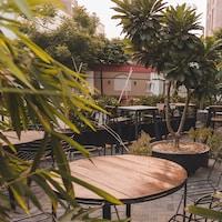Greenr cafe Gurgaon , The Meal deals